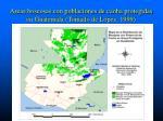 areas boscosas con poblaciones de caoba protegidas en guatemala tomado de l pez 1999