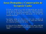 areas protegidas y conservaci n de la especie caoba