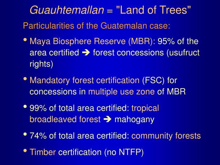 Guauhtemallan land of trees