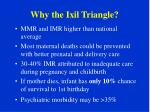 why the ixil triangle