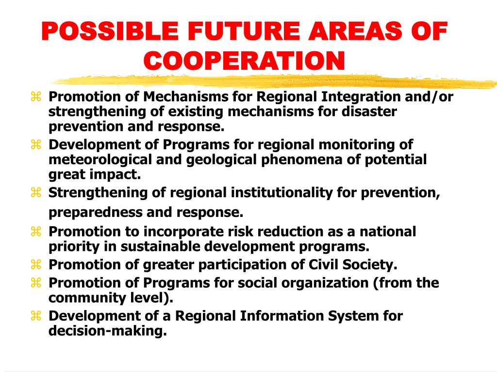 POSSIBLE FUTURE AREAS OF COOPERATION