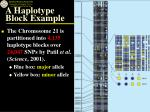 a haplotype block example