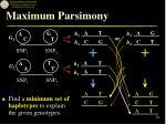 maximum parsimony