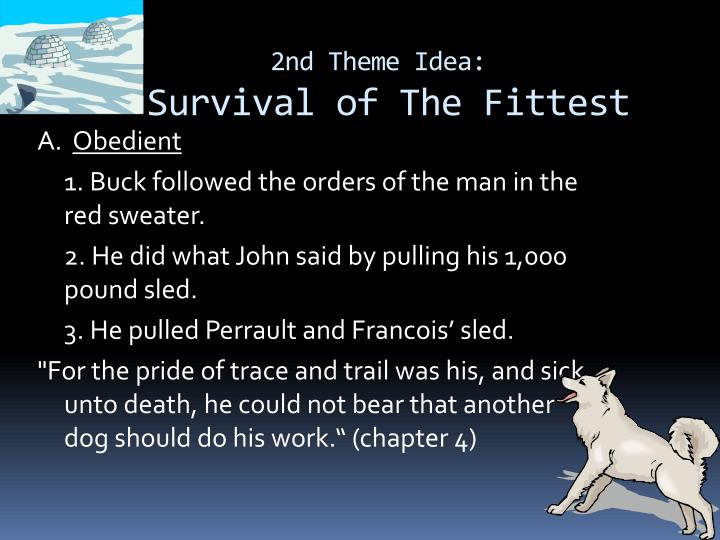 survival of the fittest in the call of the wild Could rape be an evolutionary adaptation in wild animals and is it consistent with  darwin's  but we don't call it civilized  what are the human requirements to  prove darwin's theory, ie survival of the fittest in this era.