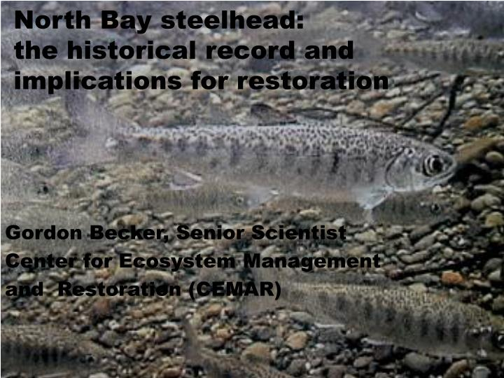 north bay steelhead the historical record and implications for restoration n.