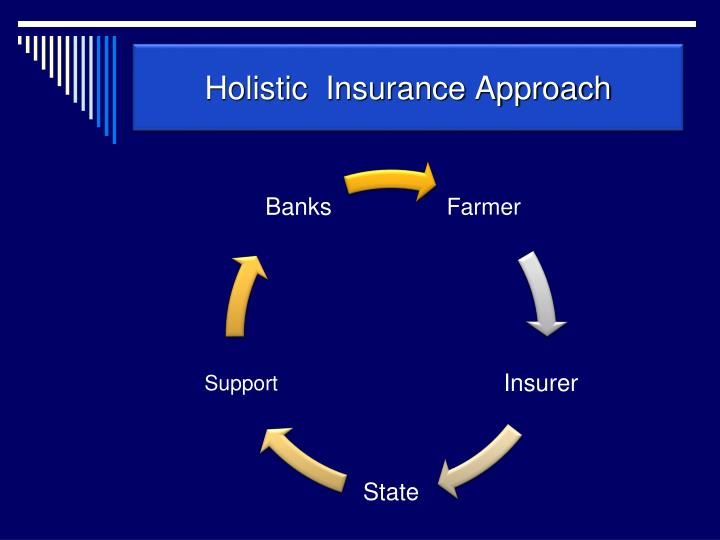Holistic  Insurance Approach