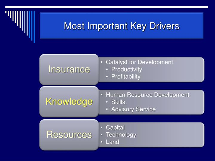 Most Important Key Drivers