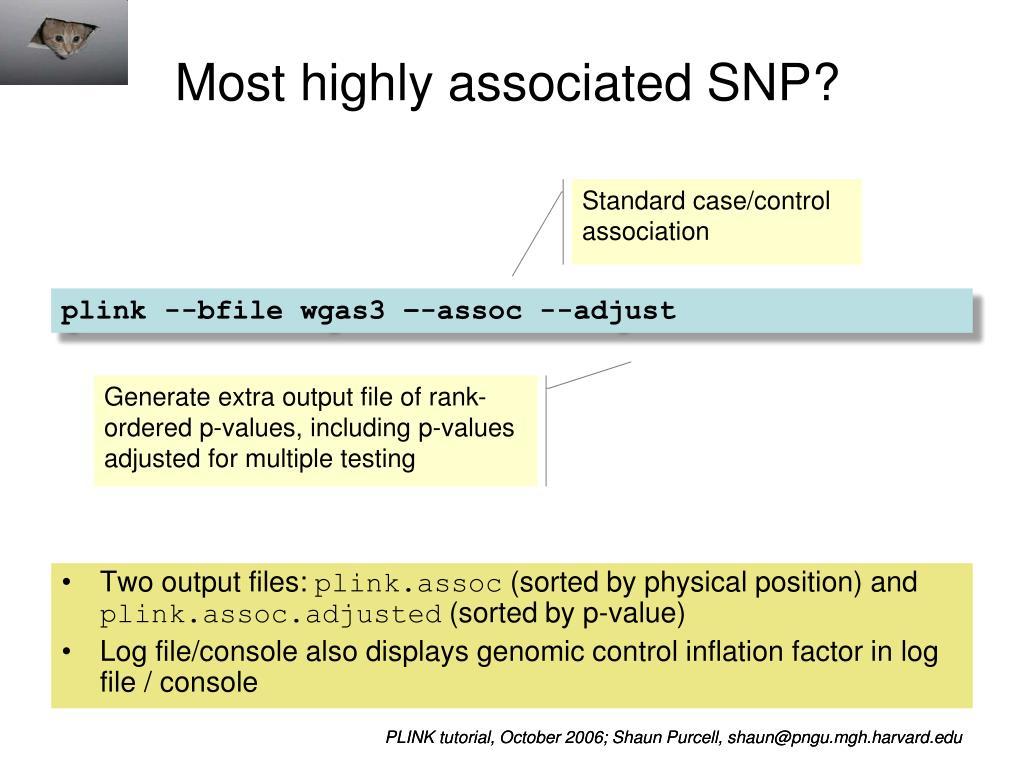 PPT - PLINK / Haploview Whole genome association software tutorial