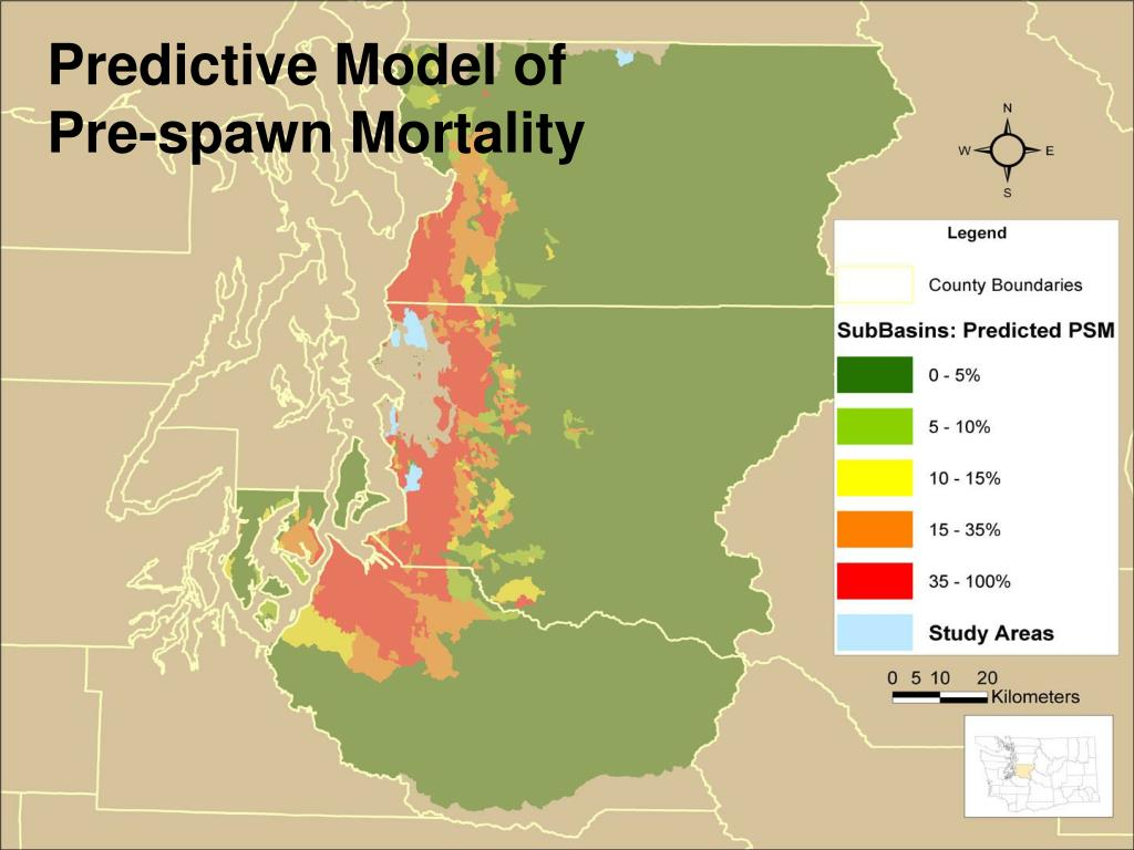Predictive Model of