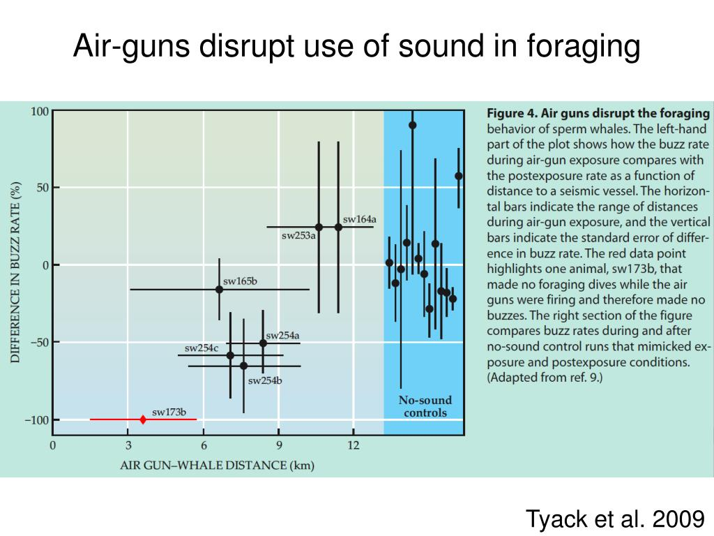Air-guns disrupt use of sound in foraging