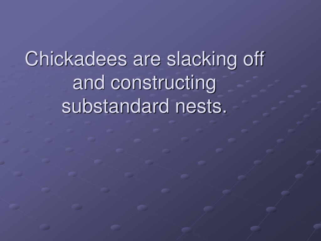 Chickadees are slacking off and constructing substandard nests.