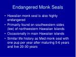 endangered monk seals29