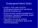 endangered monk seals30