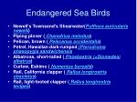 endangered sea birds