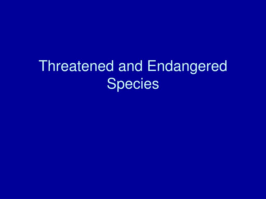 threatened and endangered species l.