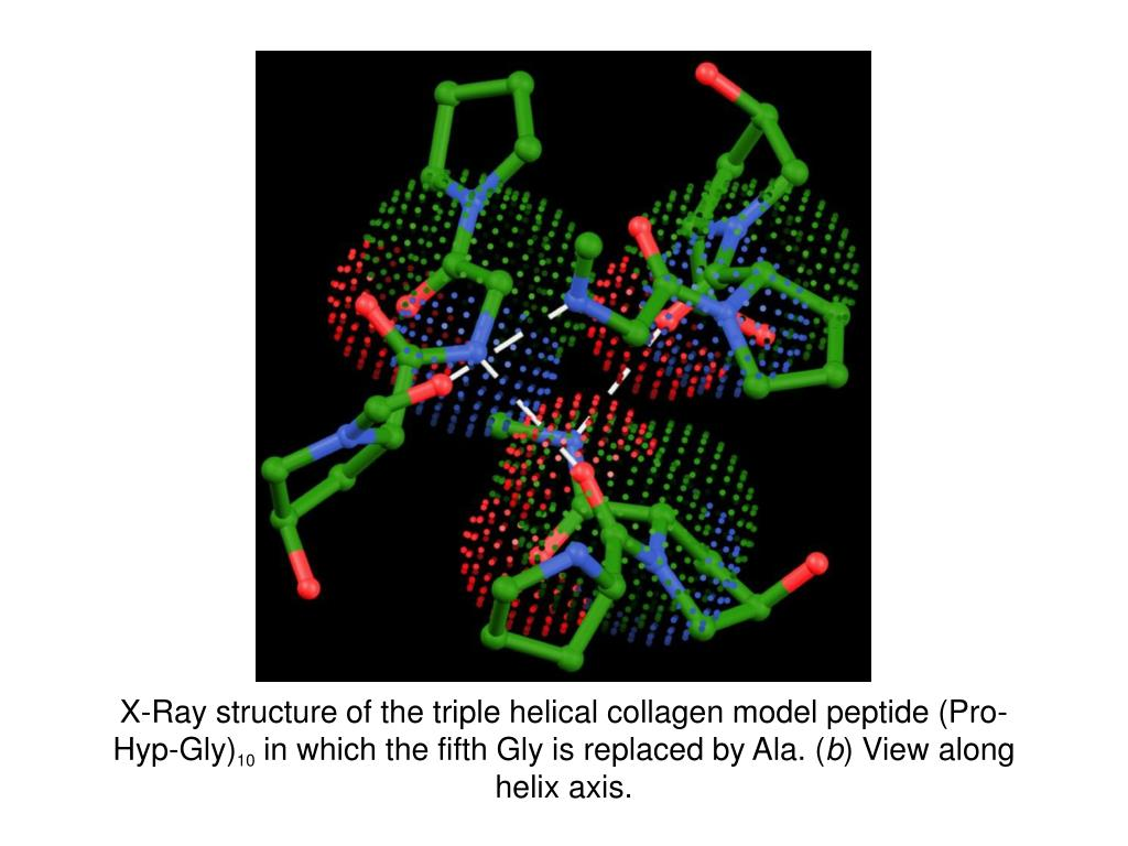 X-Ray structure of the triple helical collagen model peptide (Pro-Hyp-Gly)