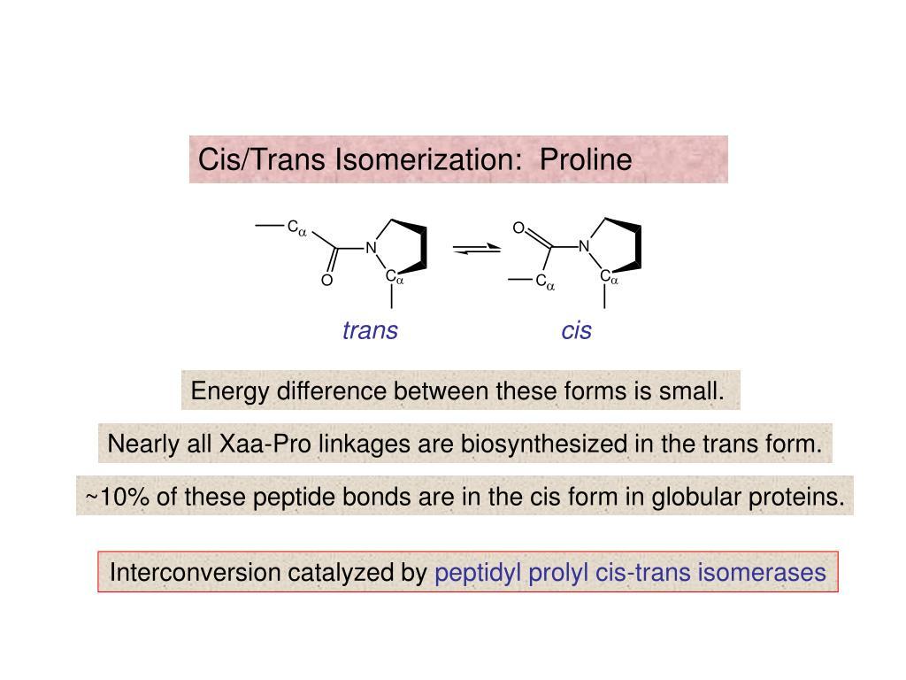 Cis/Trans Isomerization:  Proline