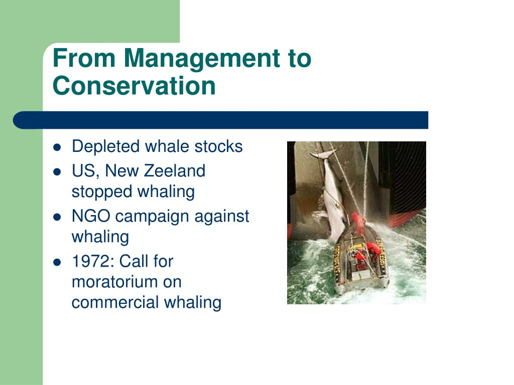 From Management to Conservation
