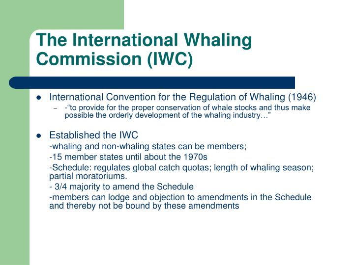 The international whaling commission iwc