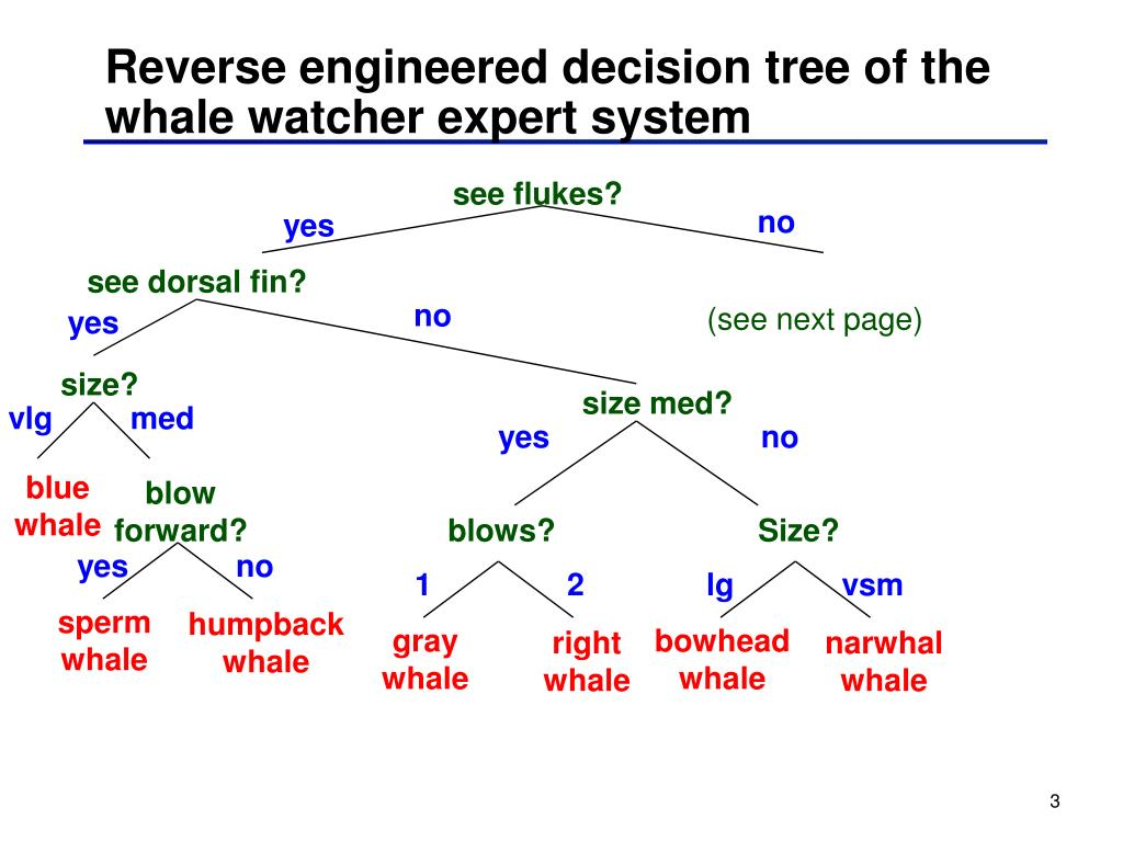 Reverse engineered decision tree of the whale watcher expert system