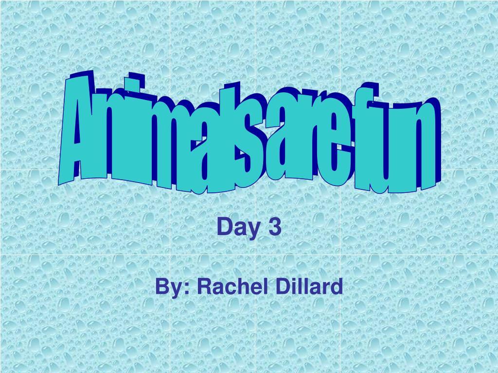day 3 by rachel dillard l.