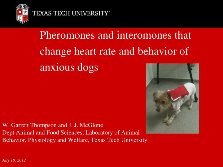 pheromones and interomones that change heart rate and behavior of anxious dogs n.