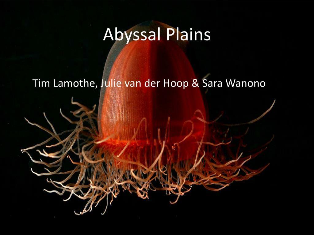 abyssal plains l.