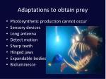adaptations to obtain prey