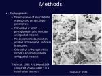 methods20