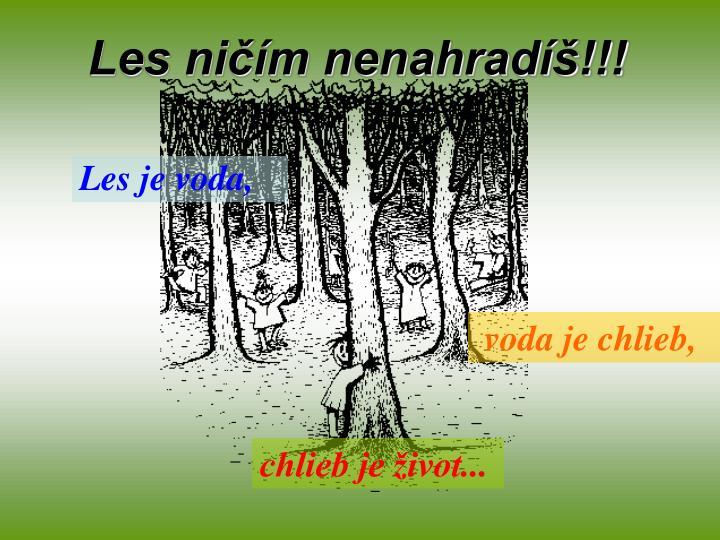 Les ničím nenahradíš!!!
