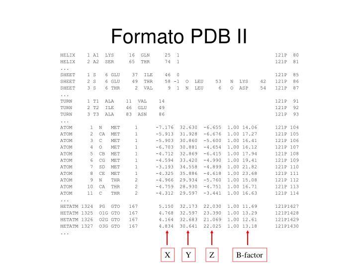 Formato PDB II
