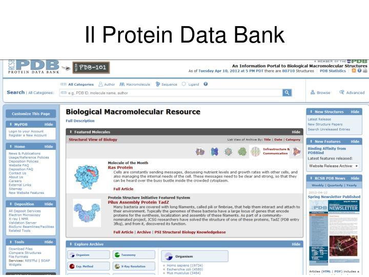Il Protein Data Bank