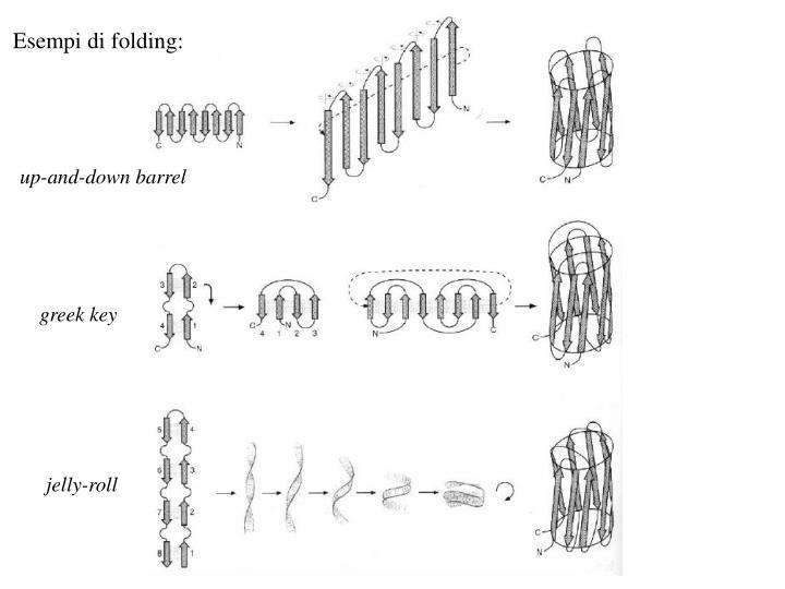 Esempi di folding: