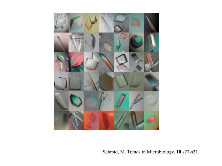 Schmid, M. Trends in Microbiology,