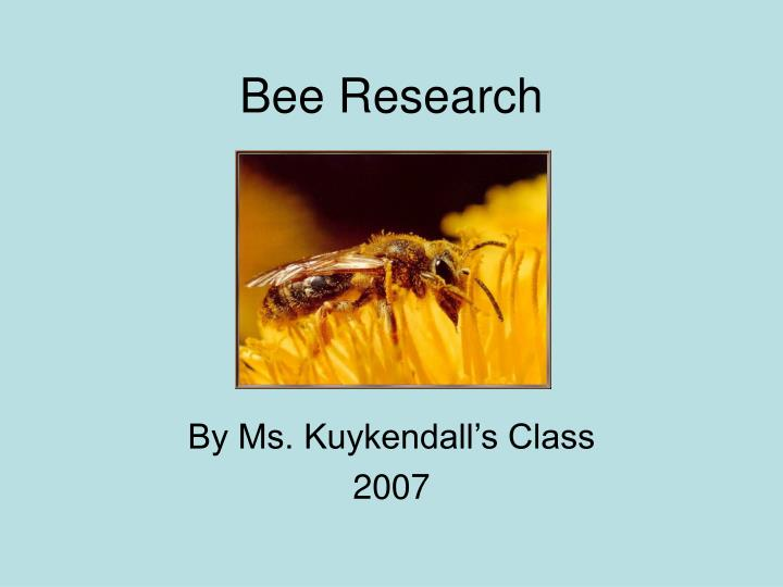 bee research n.