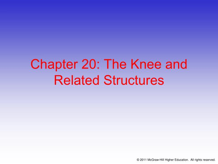 chapter 20 the knee and related structures n.