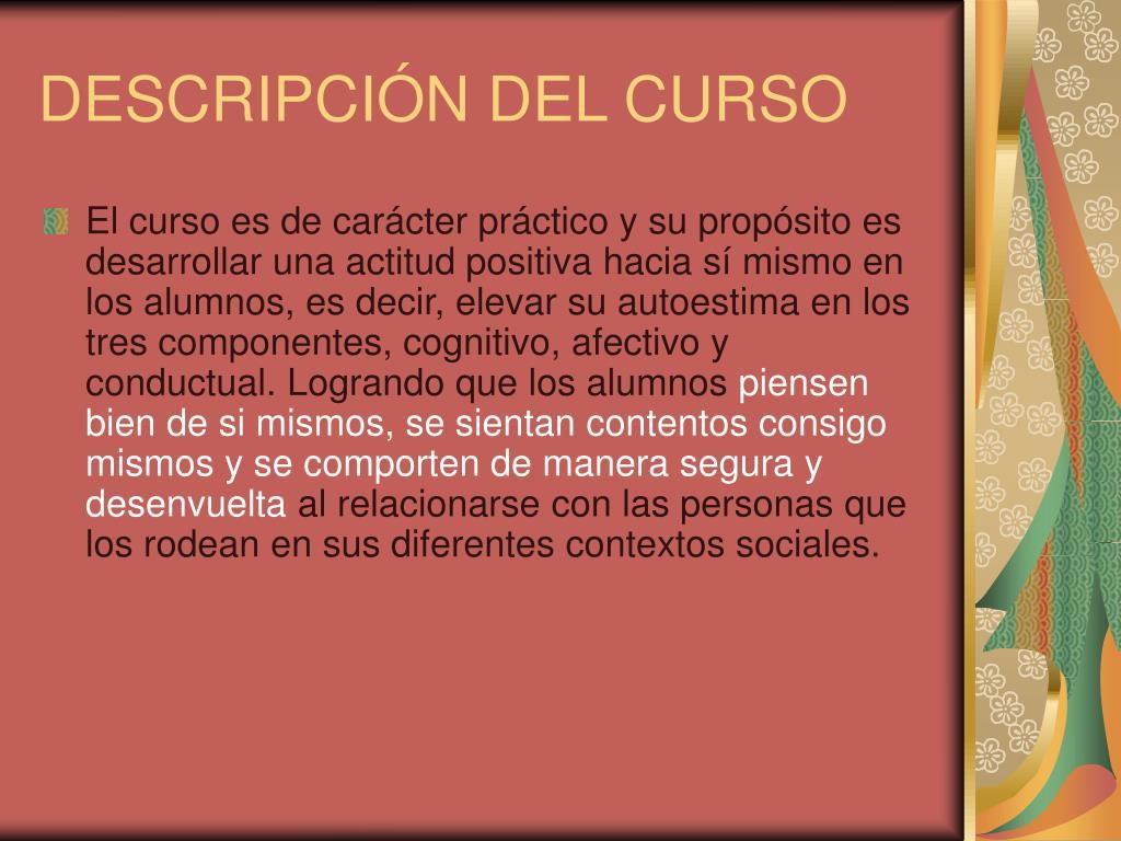 DESCRIPCIÓN DEL CURSO