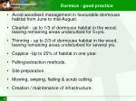 dormice good practice