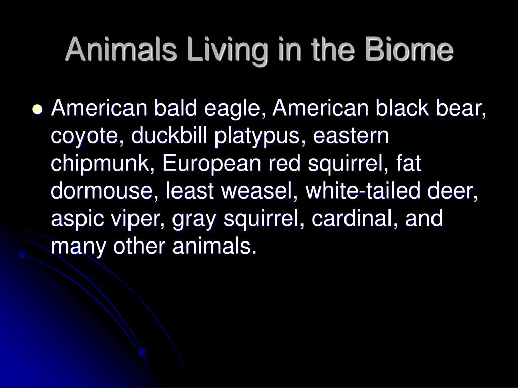 Animals Living in the Biome