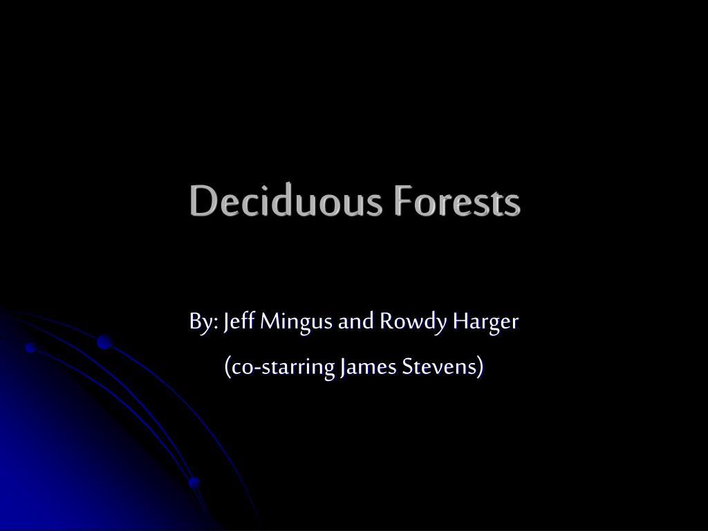 deciduous forests l.