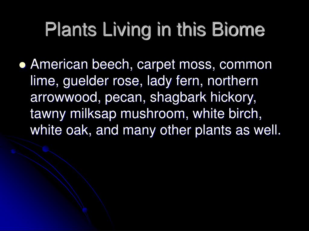 Plants Living in this Biome