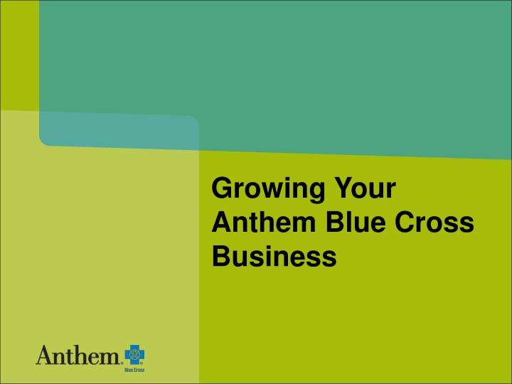 growing your anthem blue cross business n.