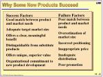 why some new products succeed