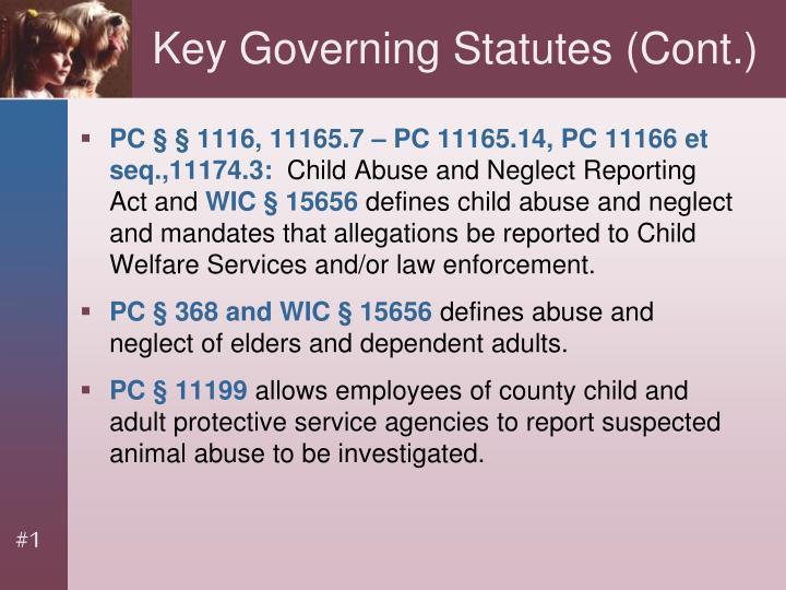 Key Governing Statutes (Cont.)