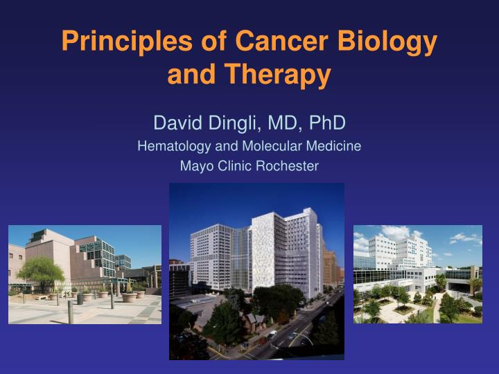 principles of cancer biology and therapy n.