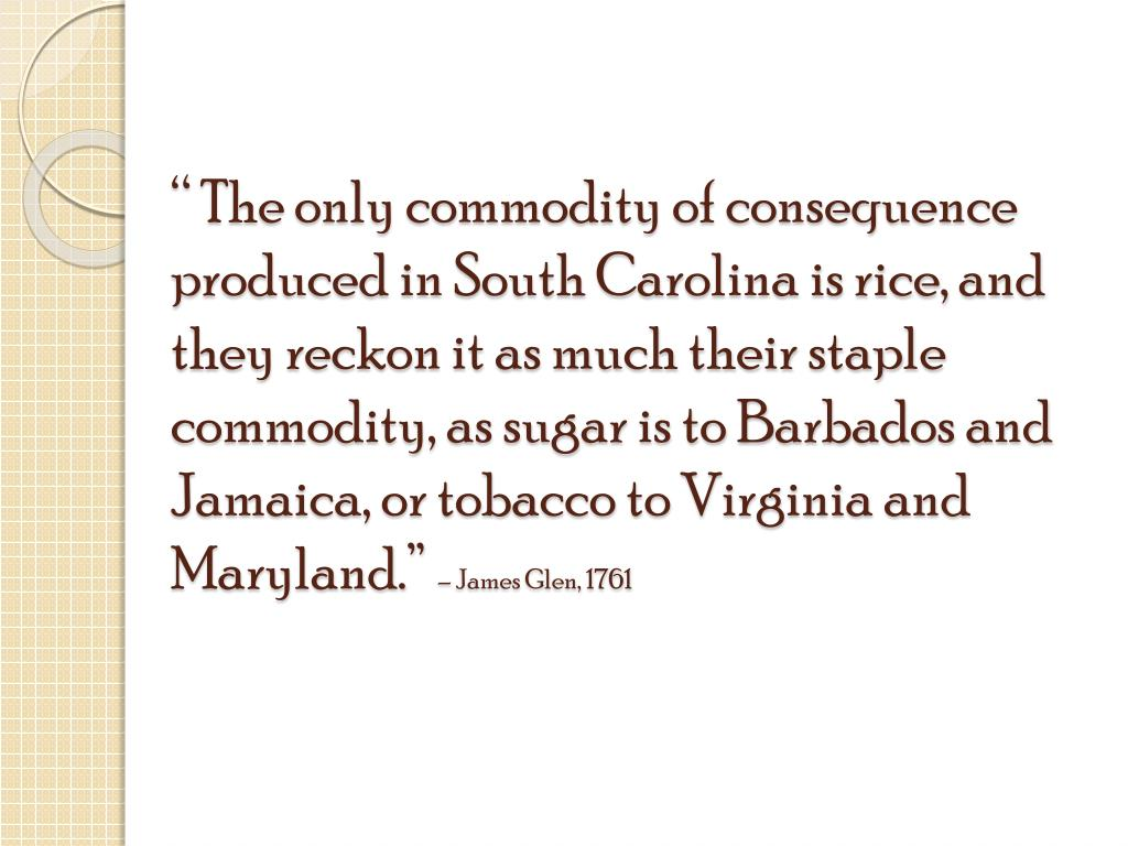 """ The only commodity of consequence produced in South Carolina is rice, and they reckon it as much their staple commodity, as sugar is to Barbados and Jamaica, or tobacco to Virginia and Maryland."""