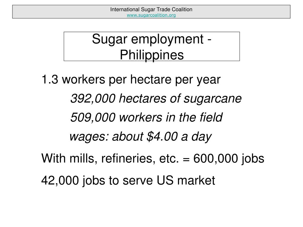 1.3 workers per hectare per year