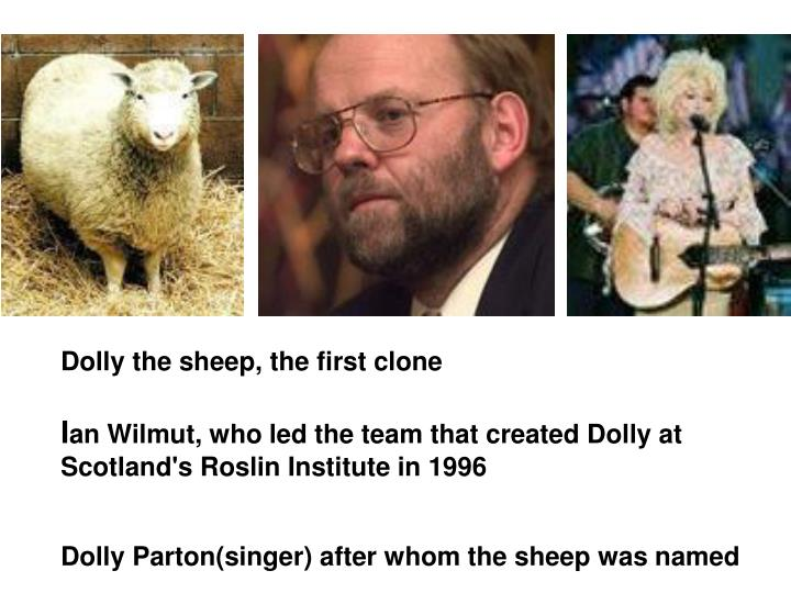 Dolly the sheep, the first clone