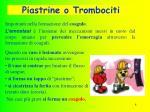 piastrine o trombociti