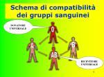 schema di compatibilit dei gruppi sanguinei